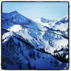 Been away for 4 days, and off my board for 2. Its amazing how excited I get still to ride. View from #brightonresort looking towards the top of the #snowbird tram. See ya Brighton early!! Whooo! #wasatch #mountains #utah #godscountry #amazing #lifeelevated #gingerslovesnow #boardutah #skiutah #bigcottonwoodcanyon #love #snow #snowboarder #utahmountains #passion #myliferocks #motivationiskey #surfpowdernotthecouch
