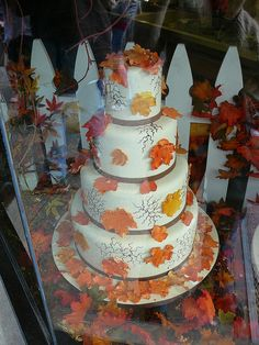 Fall cake window display.     Like this my friend, http://www.facebook.com/pages/Remove-cellulite/338659299536619  Ice Cream Ice Cream Ice Cream Ice Cream Ice Cream Ice Cream Ice Cream Ice Cream Ice Cream Ice Cream Ice Cream Ice Cream Ice Cream Ice Cream Ice Cream Ice Cream Ice Cr