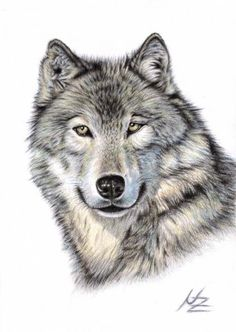 Cool epic wolf