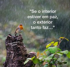 Vai ficar!!!!! Yoga Mantras, Yoga Meditation, Paz Interior, Instagram Widget, Love Messages, Beauty Quotes, Good Vibes Only, Osho, Life Is Good