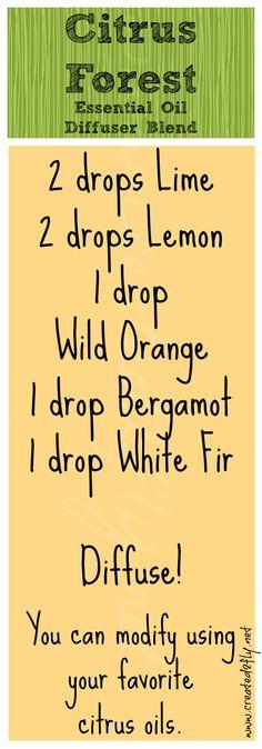Citrus Forest Diffuser Blend
