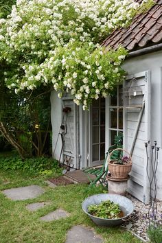 Gardening Expo ID: 5037580941 While old with idea, the particular pergola has been encountering