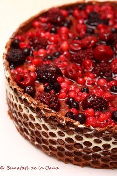 Tort mousse de ciocolata cu fructe de padure  Chocolate mousse cake Romanian Desserts, Cheesecake Cupcakes, Something Sweet, Cheesecakes, Sweet Treats, Recipies, Food And Drink, Sweets, Cooking