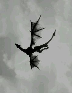Really lovely black and white dragon. Looks like it was done with just ink and … Really lovely black and white dragon. Looks like it was done with just ink and brush, like Japanese writing. Fantasy Creatures, Mythical Creatures, Dragons, Arte Obscura, Just Ink, White Dragon, Dragon Art, Dead Dragon, Dragon Flies