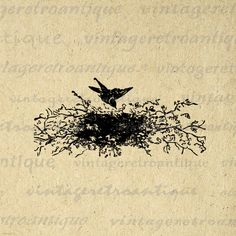 Printable Image Bird with Birds Nest Digital Birdnest Illustration Graphic Download Vintage Clip Art. High quality printable digital image clip art. This digital illustration is great for iron on transfers, printing, and more great uses. Real vintage art. Great for etsy products. This graphic is high quality, large at 8½ x 11 inches. Transparent background PNG version included.