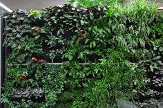 vertikaler garten gestalten sie ihr zuhause mit pflanzen vertikaler garten vertikal und. Black Bedroom Furniture Sets. Home Design Ideas