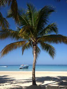 Perfect vacation spot in #islandparadise #beachday #palmtree #couplesresorts
