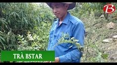 Lê Anh Tuấn - YouTube