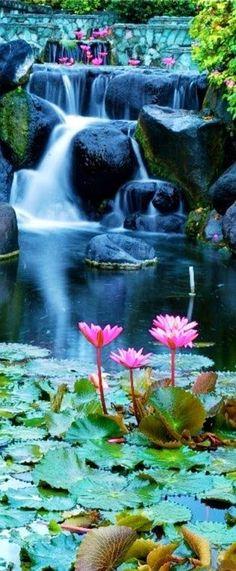 Lotus Blossom Waterfall, Bali, Indonesia