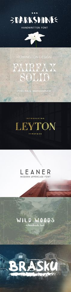 Best new fonts on Creative Market