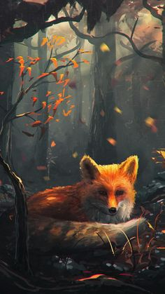 Fox Art, HD Artist Wallpapers Photos and Pictures Fox Fantasy, Fantasy Art, Cute Animal Drawings, Cute Drawings, Anime Animals, Cute Animals, Fuchs Baby, Fox Drawing, Fox Painting