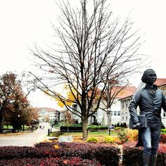 James Madison University in the fall <3