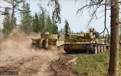 Panzer VI Tiger 312 Fgst.Nr. 250235 from 3.s.Pz.Abt. 502 passes Tiger 32x from an unknown unit, after replenishing its ammunition south of Lake Ladoga during the Third battle of Ladoga August 1943