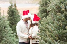The Alexanders Christmas Session   Photog blog