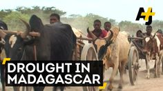 Millions Nearly Out Of Food In South Madagascar