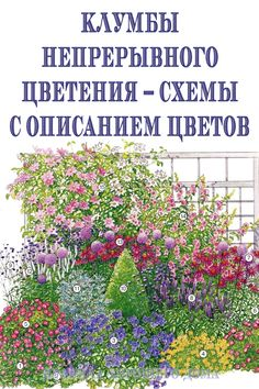 Do you have a small or large backyard? Well, container gardening is one of the best ways to keep your garden looking beautiful, regardless of the space. Try these container gardening tips for the. Gardening For Beginners, Gardening Tips, Amazing Gardens, Beautiful Gardens, Sloped Garden, Flower Garden Design, Flower Landscape, Back Gardens, Tropical Garden