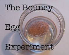 The bouncy Egg experiment.