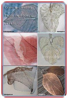 ¿Quieres aprender a esqueletizar hojas?. En esta página que indico puedes ver como se hace. Explican dos técnicas. Con paciencia obtendrás trabajos impresionantes y mil utilidades, desde bisutería (colgantes, pendientes) hasta cuadros.