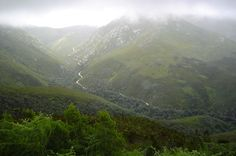 Outeniqua Mountains, George - South Africa George South Africa, Places Around The World, Around The Worlds, Explore Travel, My Land, Lighthouses, Cry, Buildings, Scenery