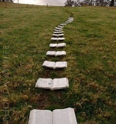 """Reading can be a road to freedom or a key to a secret garden, which, if tended, will transform all of life.""""   ― Katherine Paterson"""