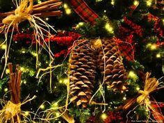 Legszebb karácsonyi dalok Christmas Music, Christmas Images, Christmas Holidays, Xmas, Christmas Tree, Wallpaper Pc, Holiday Decor, Advent, Navidad
