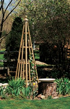 Free plans for this garden pyramid.  Article says they built it for around $20.  I'm hoping I can talk Adam into making this for the middle of the salsa garden.  :)