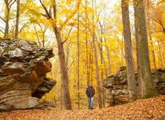 Shawnee Hills Wine Trail and Southern Illinois Fall Get Away