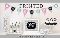 Gender Reveal Decorations Supplies KIT Baby Shower by ModParty