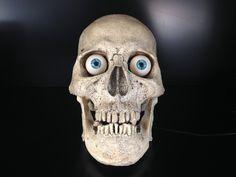 Set up an animated talking skull