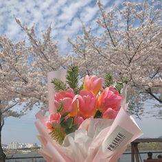 No Rain No Flowers, My Flower, Beautiful Flowers, Fresh Flowers, Wild Flowers, Plant Aesthetic, Flower Aesthetic, Arte Do Kawaii, Plants Are Friends