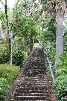 "need to do this year--!!!!     The famous ""99 steps"" St.Maarten... yup...2 rests climbing & 2 rests descending too!"