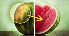 Hogyan válaszd ki a tökéletes görögdinnyét – Tippek egy tapasztalt termesztőtől