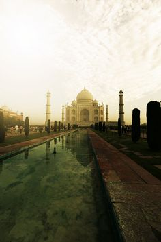 Taj mahal. Only open for a few more years