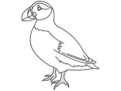 Puffin Coloring - Quoteko. Bird Coloring Pages, Coloring Sheets, Colouring, Panda Birthday Cake, Puffins Bird, Bird Cakes, Kung Fu Panda, Bird Drawings, Newfoundland