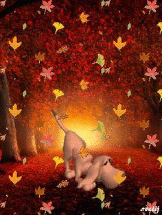 В осеннем лесу (потерял след) - анимация на телефон №1273068