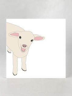little lamb, I like you.