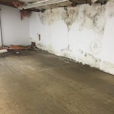 Mold Assessments and Mold Inspections Rochester NY #roc #rochesterny…