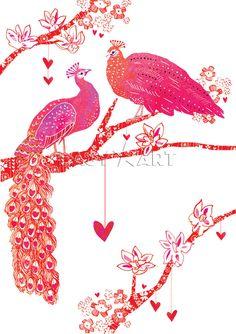 Peacock Romance
