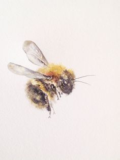 "Watercolor Painting, Bumble Bee, Original Fine Art, 9""x12""."