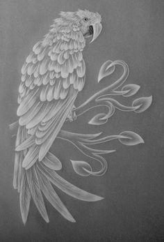 White work Macaw.