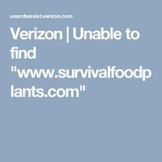 "Verizon | Unable to find ""www.survivalfoodplants.com"""