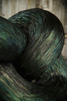 The Uncanny Feather Using biological elements to create fluid forms of movement, artist Kate MccGwire takes bird feathers and assembles them into strange, intertwining forms. Playing with materiality,...