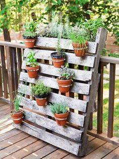 Com um pallet, suportes para vasos e algumas plantinhas temos um belo jardinzinho. / Crédito: Pinterest