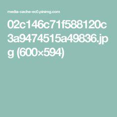 02c146c71f588120c3a9474515a49836.jpg (600×594)