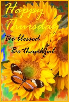 58 Best HAPPY THURSDAY Images On Pinterest Happy Thursday Its Thursday And Thursday Humor