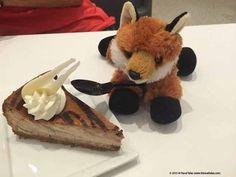 Fox Fury undercover eating cake at the Newseum in Washington DC Undercover, Washington Dc, Eat Cake, Fox, Teddy Bear, Travel, Viajes, Teddybear, Trips