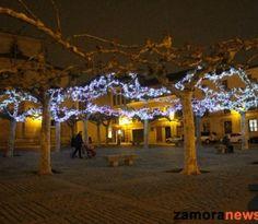 La Navidad luce en la Plaza de Viriato