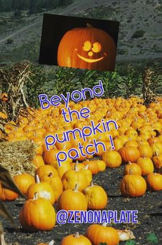 SIMPLY DELISH : PRODUCE EXTRAVAGANZA: BEYOND THE PUMPKIN PATCH !
