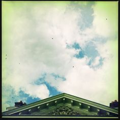Day 9: Sky.  Evening swallows at Uppark NT.