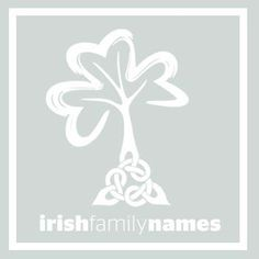 """Irish Family Names Mac Giolla Bhríghde (McBride) McBride is derived from the Irish surname Mac Giolla Bhríghde. This name denotes """"son of Giolla Bhríghde"""" meaning """"servant of St. Brigid"""".   Mac a' Bhríghde is also recorded MacBride. It is a shortened form in the spoken language of Mac Giolla Bhríghde.   The McBride family motto is """"I am Ever Prepared."""""""